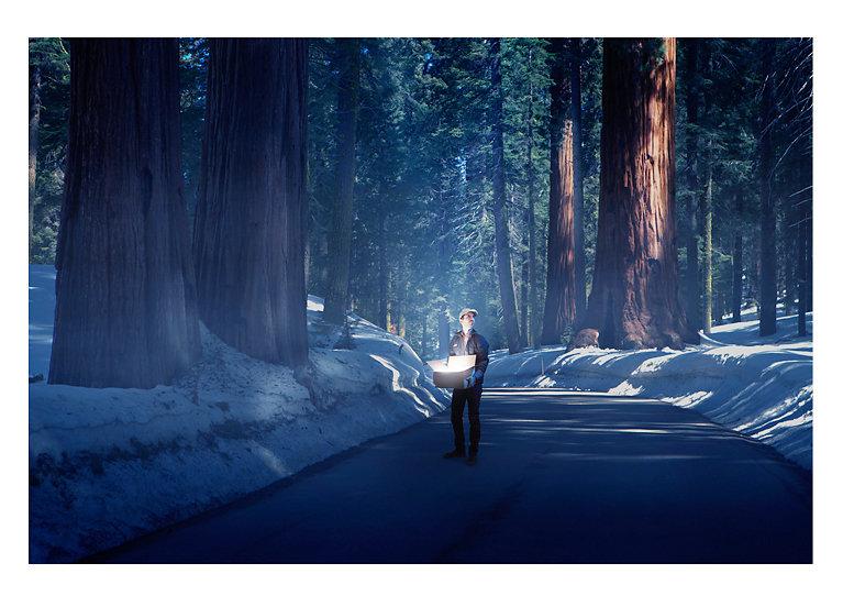 Box-sequoia-final.jpg