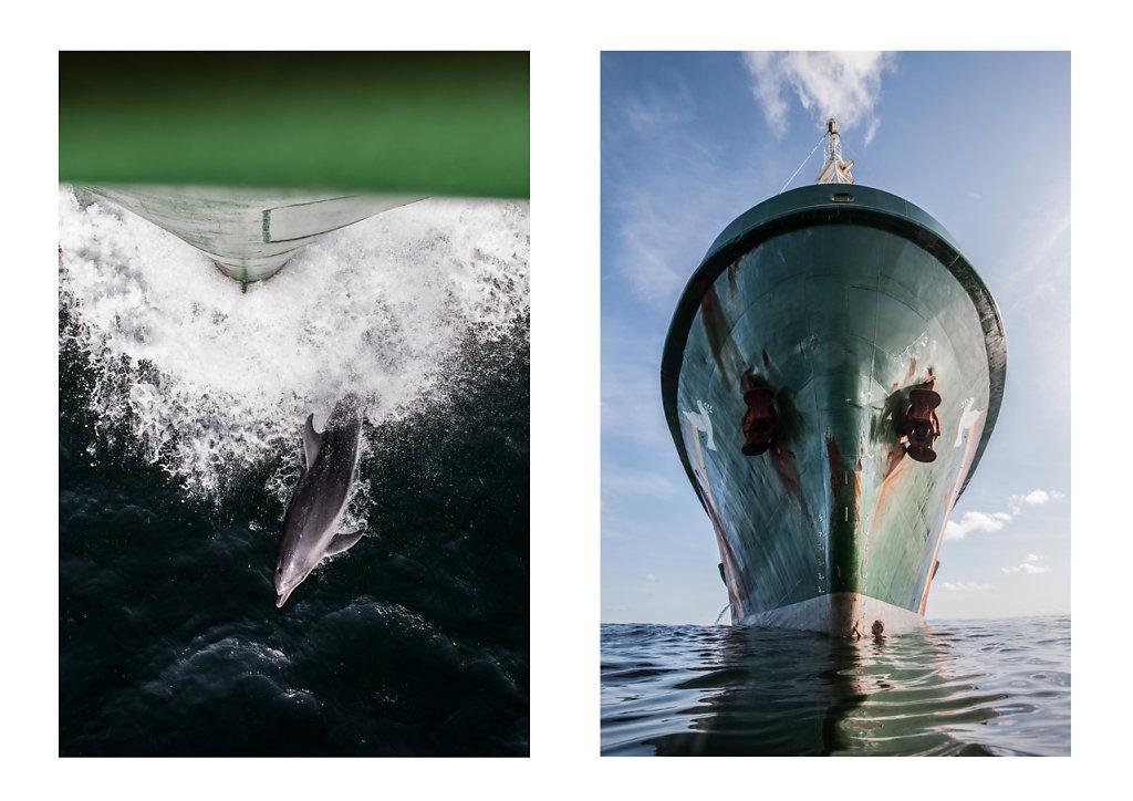 Pierre-BAELEN-Amazon-Reef-23.jpg